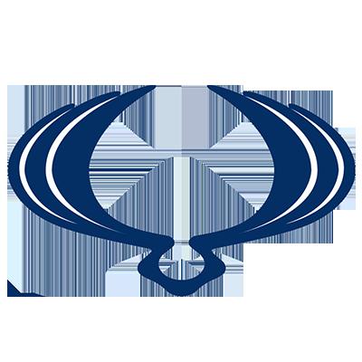 Logo - SsangYong